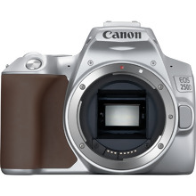 Canon EOS 250D Body, Silver + EF-S 18-55mm f/4-5.6 IS STM Lens