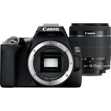 Canon EOS 250D Body, Black + EF-S 18-55mm f/4-5.6 IS STM + Spare Battery